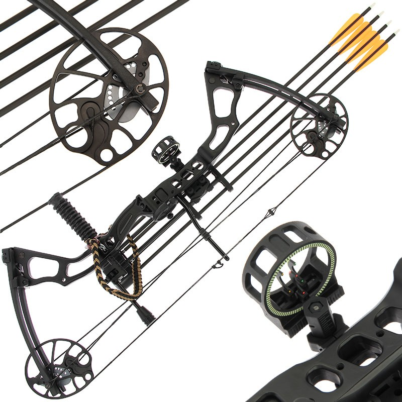 Anglo Arms Chikara Compound Bow Set